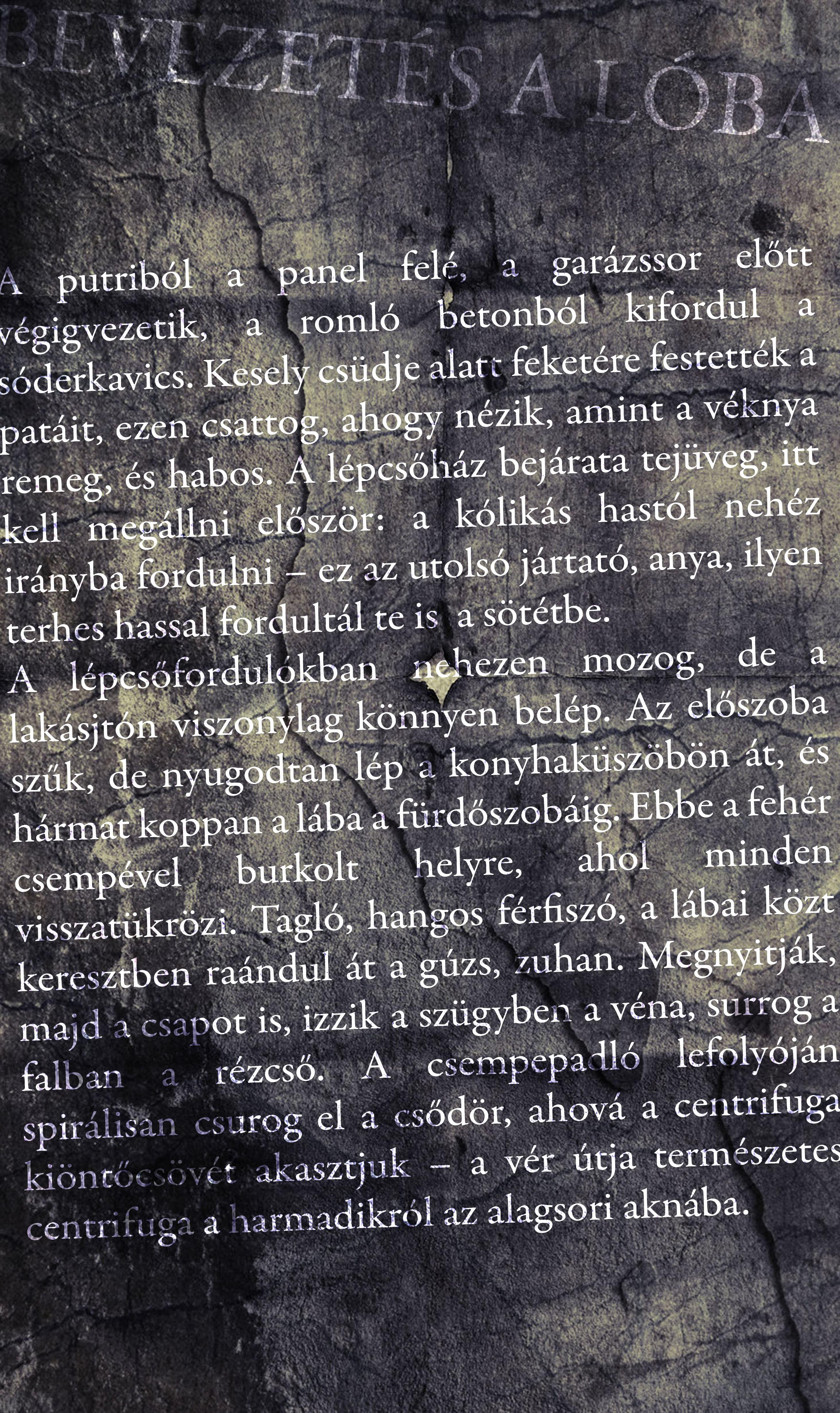 Kele Fodor Ákos: Bevezetes a lóba (vizuális költemény)