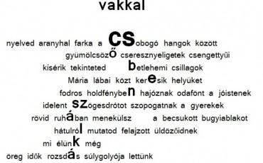 2014_06_01-Papp-Tibor-vakkal