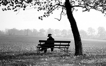 Man sitting on a bench under a tree