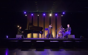 Peter-Sarik-Trio-07