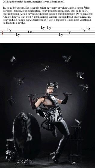 Király Tamás: Text fashion
