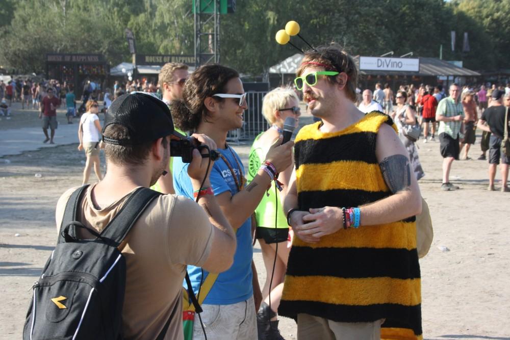 Méhecske a Sziget Fesztiválon
