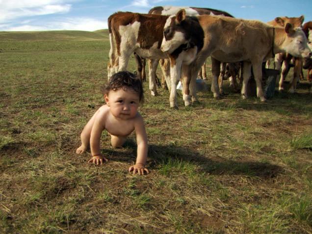 Babák: Az első év (Babies)