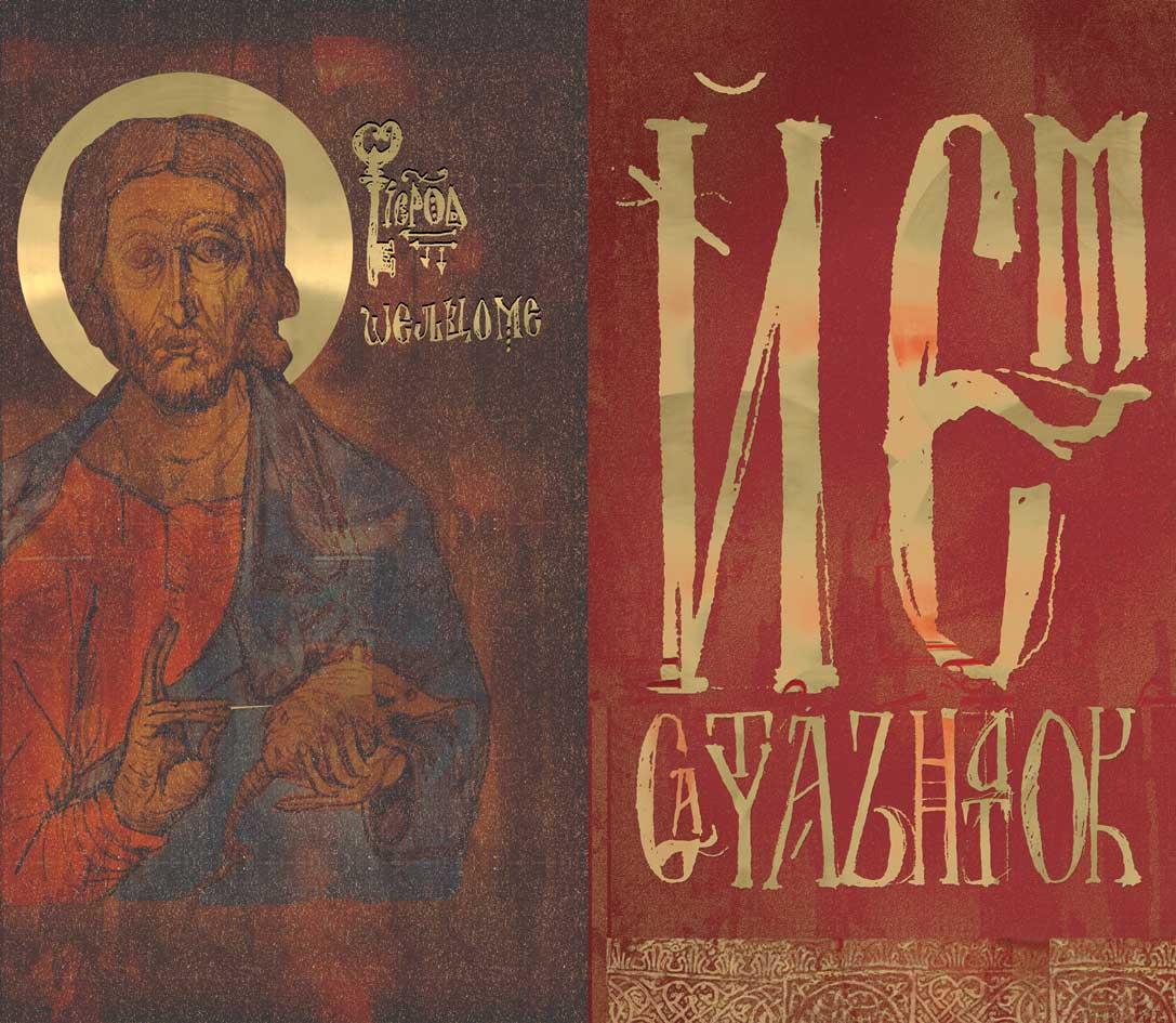 Damir Pavić munkája