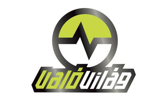 VV4 logo